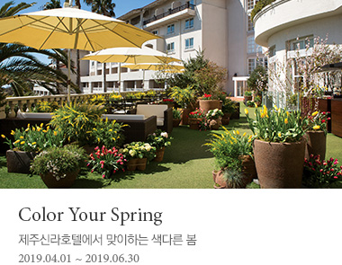 Color Your Spring 패키지